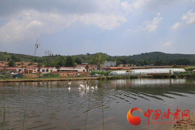 【平凉崆峒】大美生态园:美了乡村 富了百姓