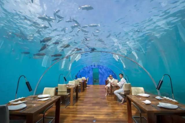 在海底吃海鲜 水下餐厅让你清凉一夏