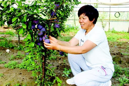 酒泉:金塔县深度挖掘乡村旅游资源