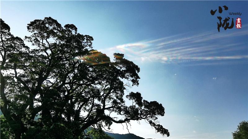 大槐树周围山清水秀,与五龙山,唐帽山,樱桃沟等风景名胜相映成趣.