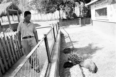 """【特稿】老饲养员翁跃龙,与动物们30载的""""不了情"""""""