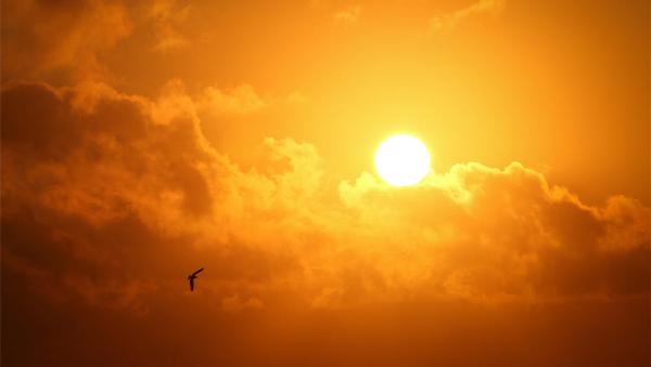 [新闻直播间]甘肃:兰州持续13天高温 30年来最长