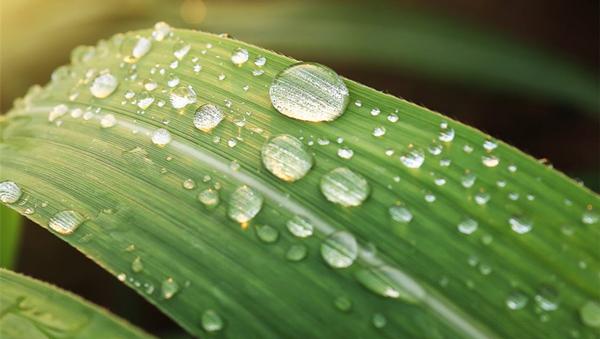 甘肃:30年最长连续高温结束 将迎来大范围降雨