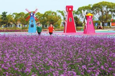 游客在酒泉市金塔县金鑫梧桐苑漫步赏景(图)