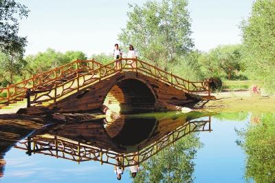 8月的酒泉市金塔县胡杨林景区 恰似一幅美丽的油画