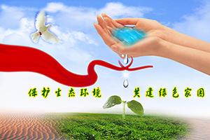 保护生态环境 《保护生态环境,共建绿色家园》
