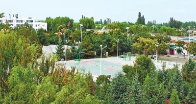 构筑生态屏障 追逐绿色梦想——酒泉市防沙治沙工作综述