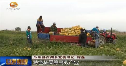 甘肃:加大产业扶贫力度 促进农民持续增收