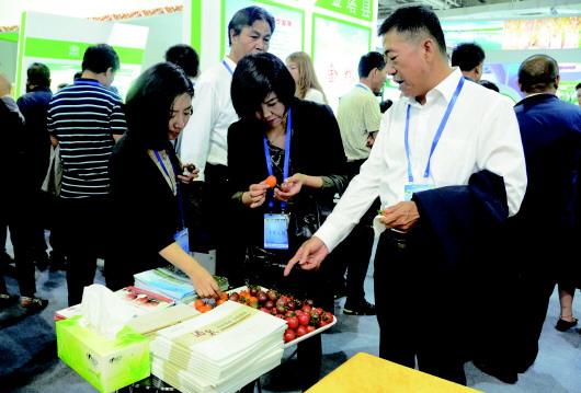 2017甘肃农业博览会举行  嘉宾了解酒泉特色优势农产品(图)