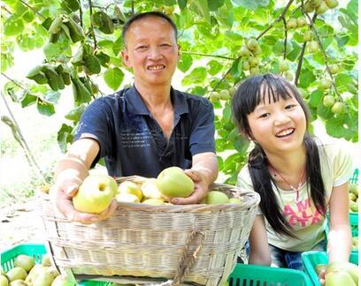 甘肃省新型职业农民培育方案出台
