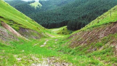 众志成城推进全域生态文明建设——聚焦祁连山国家级自然保护区(张掖段)系列报道之三(图)