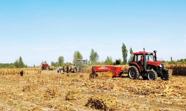 张掖临泽县全面推广农作物秸秆机械化收获技术