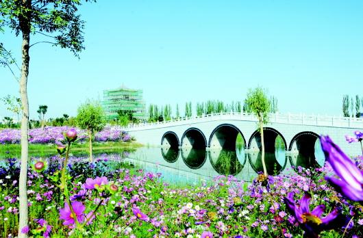 酒泉肃州区四坝海子湿地公园十一开放(图)