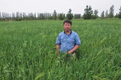 坚守梦想小草也能做成大产业——访兰州欣海天然绿色食品开发有限公司总经理白建海