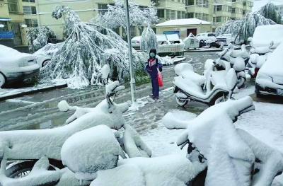 兰州:雨雪突袭气温骤降