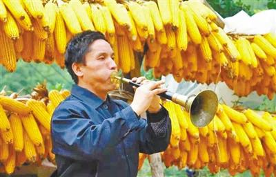 陇南康北唢呐:慰藉农人心灵的乡村音乐(图)