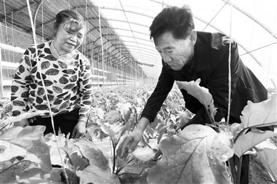 """武威市古浪县胡中山:当农民的""""好管家""""(图)"""