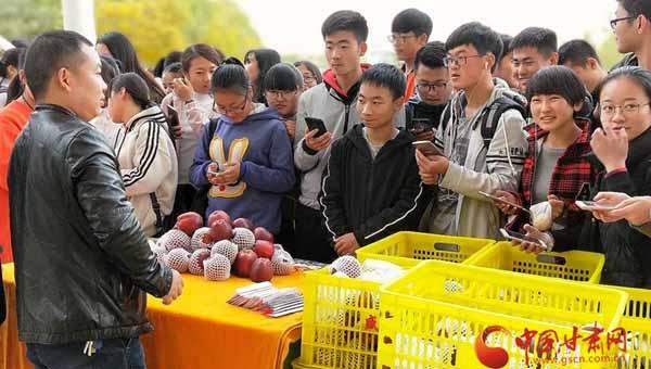 """陇南市西和县""""农特电商进高校"""" 为电商扶贫开辟新途径(图)"""