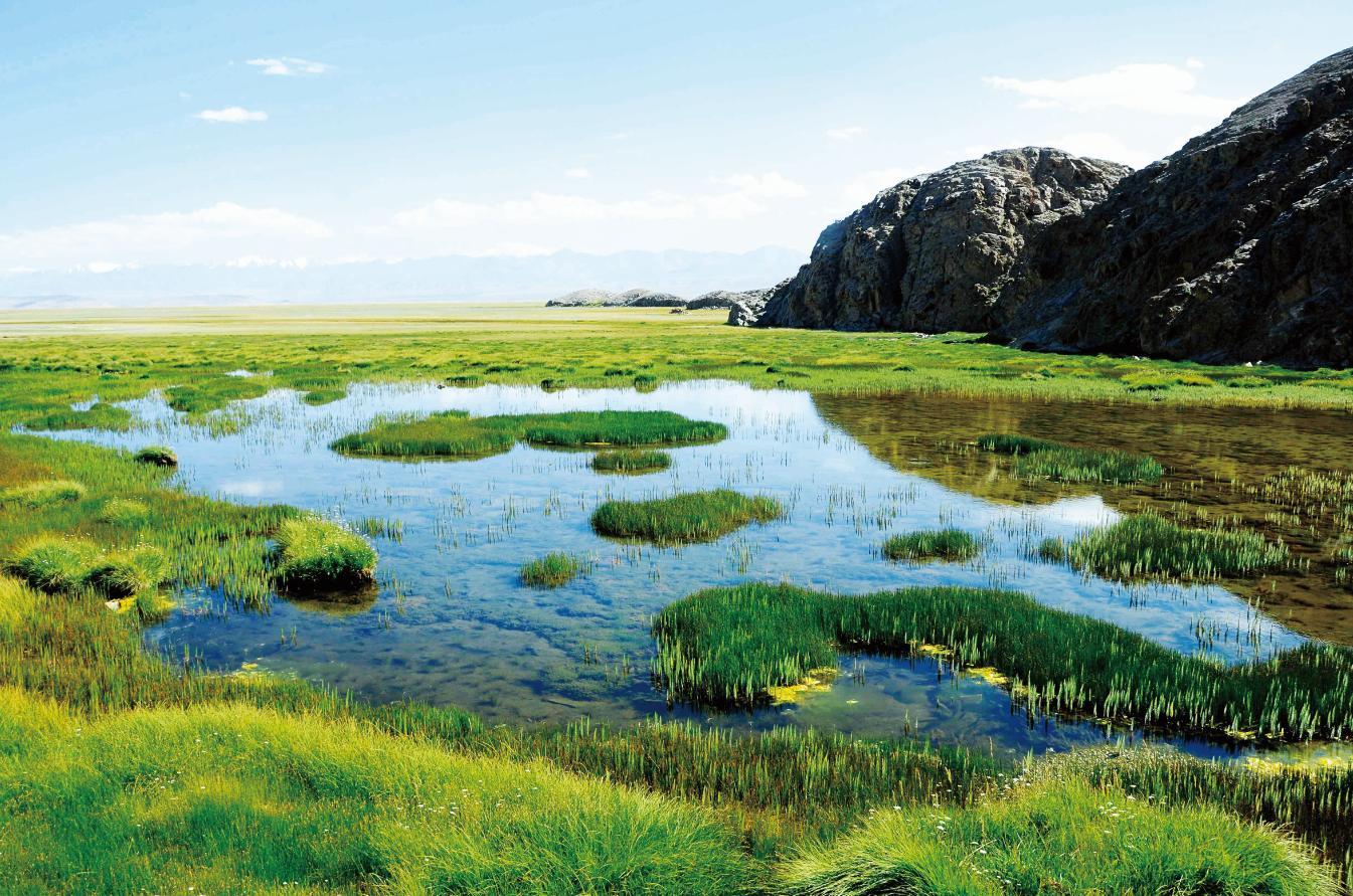 酒泉:盐池湾的生态综合保护之路(图)