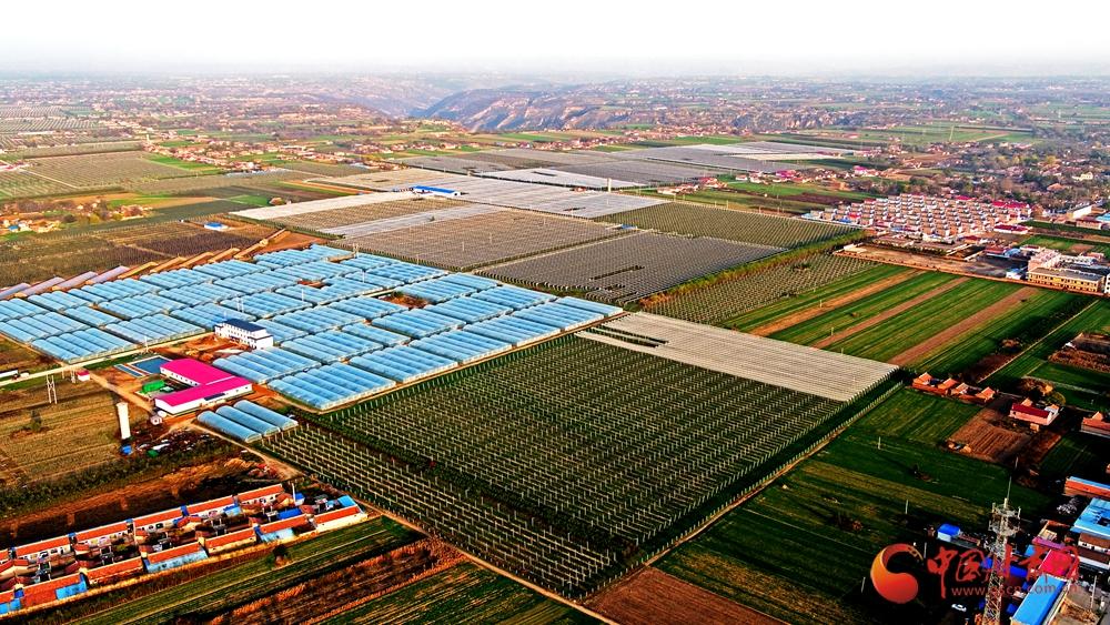 """该示范园带动全县发展""""海升模式""""苹果基地5万亩,增加了农民收入,推进"""