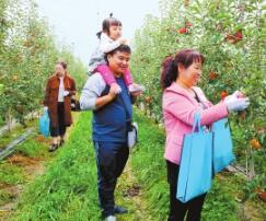 多极突破谋发展 ——庆阳宁县创新发展县域经济侧记
