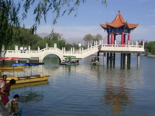张掖高台:沙荒地蝶变生态园