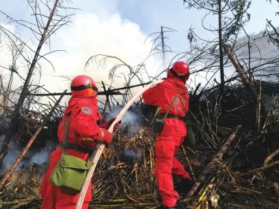 兰州:森林防火实战演练(图)