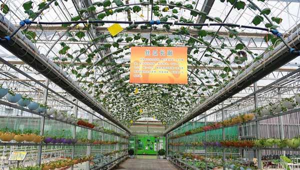 天水武山:以科技发展现代农业(组图)