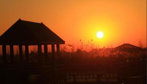 甘肃戈壁湿地初冬清晨 一轮红日喷薄而出