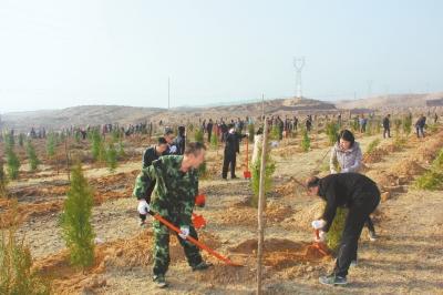 白银市平川区组织干部职工在水泉镇象鼻坡开展植树造林活动