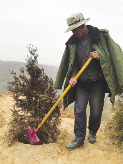兰州榆中北山造林人扎根荒山筑绿洲