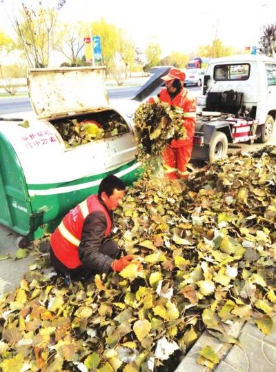 兰州市七里河区环卫局全力做好冬季落叶清扫工作(图)