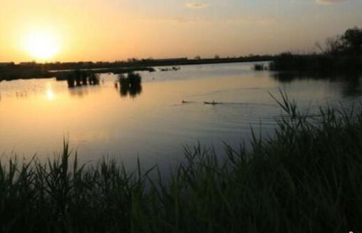 甘肃立法保护湿地生态14年 湿地修复与恢复初见成效