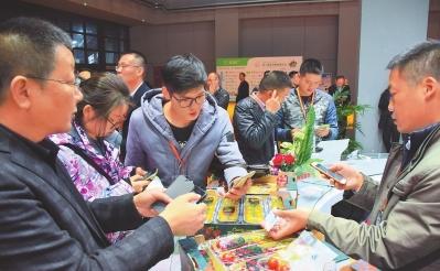 """""""平凉金果""""沪上扬名 泾川企业在第十届亚果会上达成1万多吨苹果销售协议"""