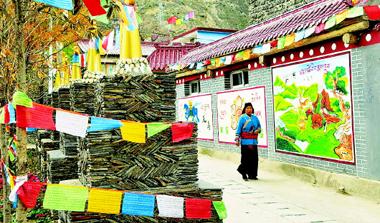 甘南州生态文明小康村建设遍地开花