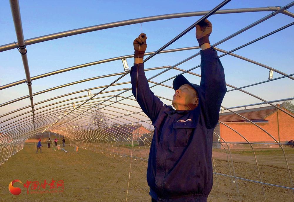 庆阳宁县:特色种养业让农民富起来
