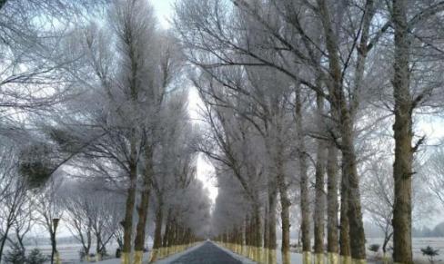 甘肃戈壁小城迎今冬首场降雪