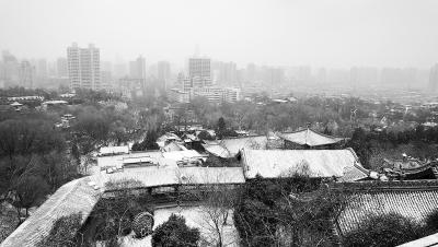 甘肃省多地迎来新年第一场雪(图)