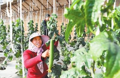 甘肃省壮大特色产业为精准脱贫增添持续动力