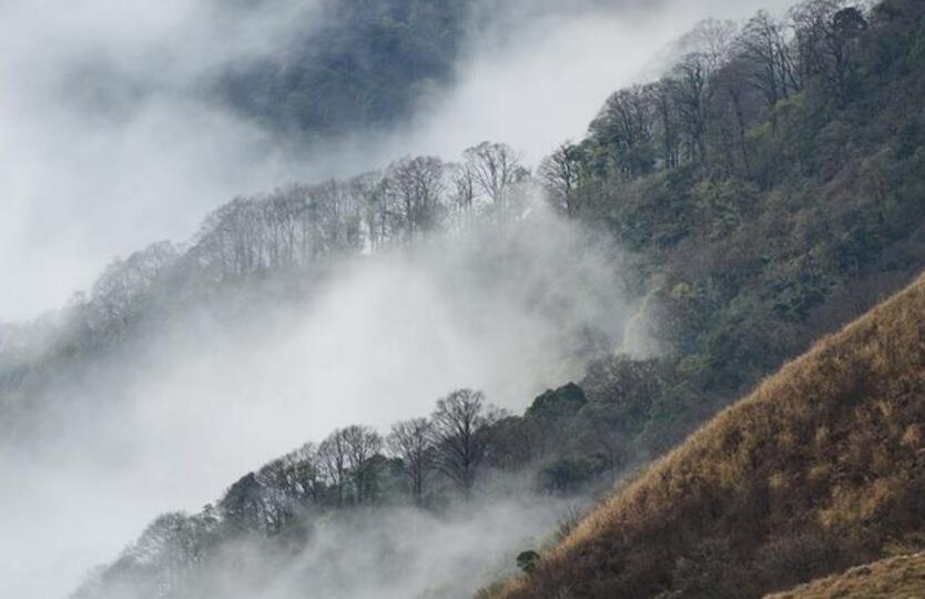 贵州苗岭国家地质公园冬景美