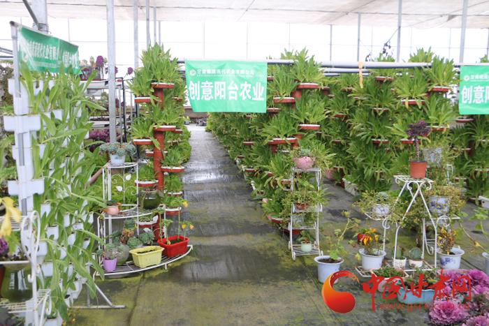 兰州榆中发展现代农业产业 为老百姓提供优质的农特产品(图)