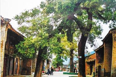 两当杨店古街:出甘入陕的要塞之地(组图)