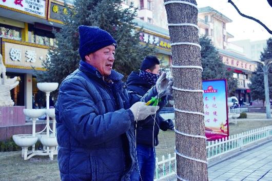 酒泉肃州区悬挂灯笼 营造欢乐祥和的春节文化氛围(图)