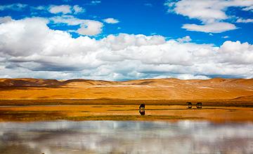 甘孜州丹巴县待客95万人次 旅游收入达9.5亿