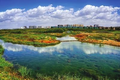 """兰州秦王川湿地公园升格""""国家级""""(图)"""