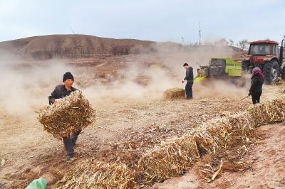 白银市平川区王家山镇玉米秸秆打捆机逐片开展打捆作业