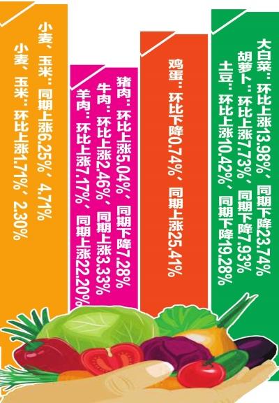 1月份甘肃全省肉菜价格呈季节性上涨态势