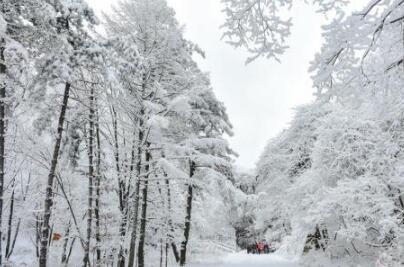 甘肃立春后迎大风降雪天气 河西低温降至-20℃以下