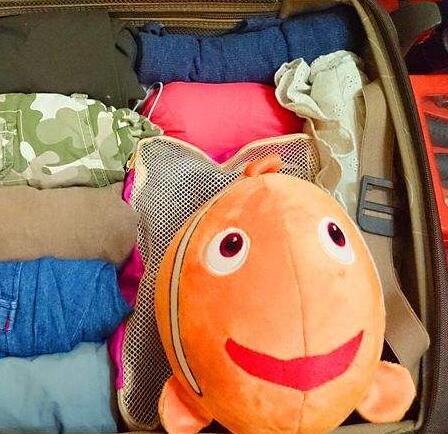 """回家过年:教你几招""""收拾行李""""小妙招"""