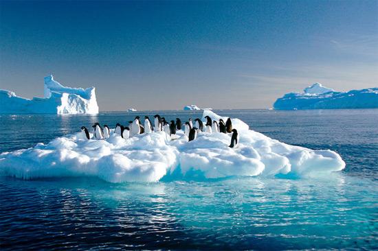 中国游客春节出境游偏爱东南亚 南极意外走红